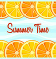 summer time background vector image
