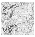 The Flavors Of Wine Word Cloud Concept vector image vector image