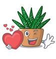 with heart cartoon zebra cactus blooming in garden vector image