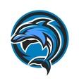 Dolphin sport logo emblem vector image vector image