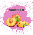 juicy peach on a bright background vector image vector image