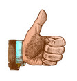 male color hand make gesture thumb finger up vector image