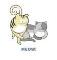meow poster with adorable cats with funny faces vector image vector image