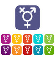 transgender sign icons set vector image vector image