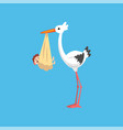 white stork delivering a newborn baby stork with vector image
