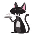 cat waiter vector image vector image