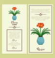 clivia flower in pot banners vector image