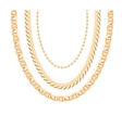 Gold Chain Jewelry vector image vector image