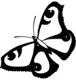 graphic stylized black and whit peacock butterfly vector image