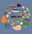 iron fe mineral microelement healthy organic vector image vector image