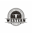 texas longhorn country western bull cattle vector image