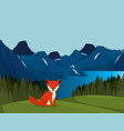 canadian landscape with fox scene vector image vector image