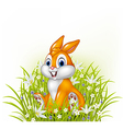 Cartoon rabbit on grass background vector image