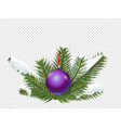 christmas decorations evergreen pine branches on vector image vector image