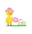 funny little yellow duckling wearing pink hat vector image vector image