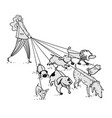 girl walking a bunch dogs vector image