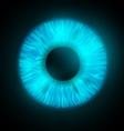 iris of the human eye vector image vector image
