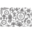 set henna floral and animal elements vector image