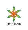 sun flower logo vector image vector image