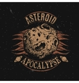 Vintage label with asteroid vector image vector image