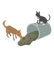 stray animal icon isometric 3d style vector image