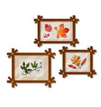 a set of wall-mounted compositions with autumn vector image vector image