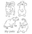 cat dog rabbit rat vector image vector image