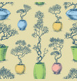 small trees in pots seamless pattern bonsai vector image