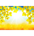 Sunny autumn landscape vector image vector image