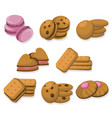 delicious dessert chocolate cookies set collection vector image vector image