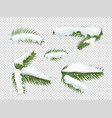 green pine tree branches with snow clipart vector image