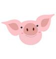 head cute smiles pig cartoon funny face pig vector image