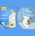 poster of toilet cleaner ads before and vector image vector image