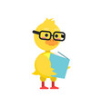 smart little yellow duckling in glasses reading vector image