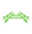 template leaf organic vector image vector image