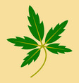 tree leaf in flat style vector image vector image