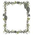 Vine leaves grapes frame vector image vector image