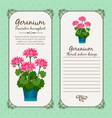 vintage label with geranium plant vector image