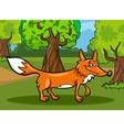 wild fox animal cartoon vector image