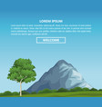 beautiful landscape infographic vector image vector image