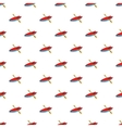 Kayak pattern cartoon style vector image