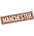 manchester brown square stamp vector image vector image