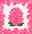 Seamless texture rhododendron in a frame vector image vector image