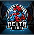 betta fish esport mascot logo vector image