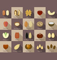nut icon set flat style vector image vector image