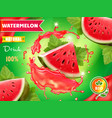 watermelon juice advertising package design vector image vector image