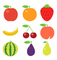 Fruits icons set vector image