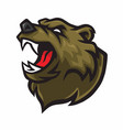 angry bear logo mascot design vector image