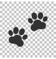 Animal Tracks sign Dark gray icon on transparent vector image vector image