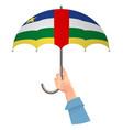 central african republic flag umbrella vector image vector image
